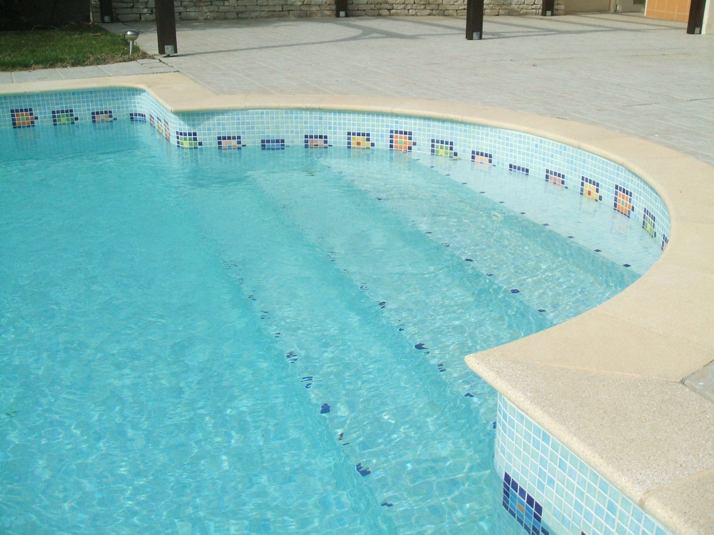 Frise et motif dauphin d coration personnalis e en maux for Remplacement liner par resine piscine